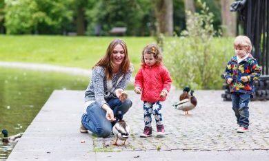 gezinnetje in het park
