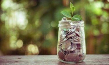 plantje in een potje met muntgeld